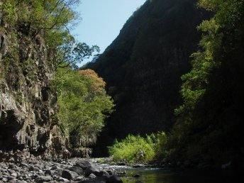Walking on Reunion Island, Bras de la Plaine gorges © Alizés Montagnes